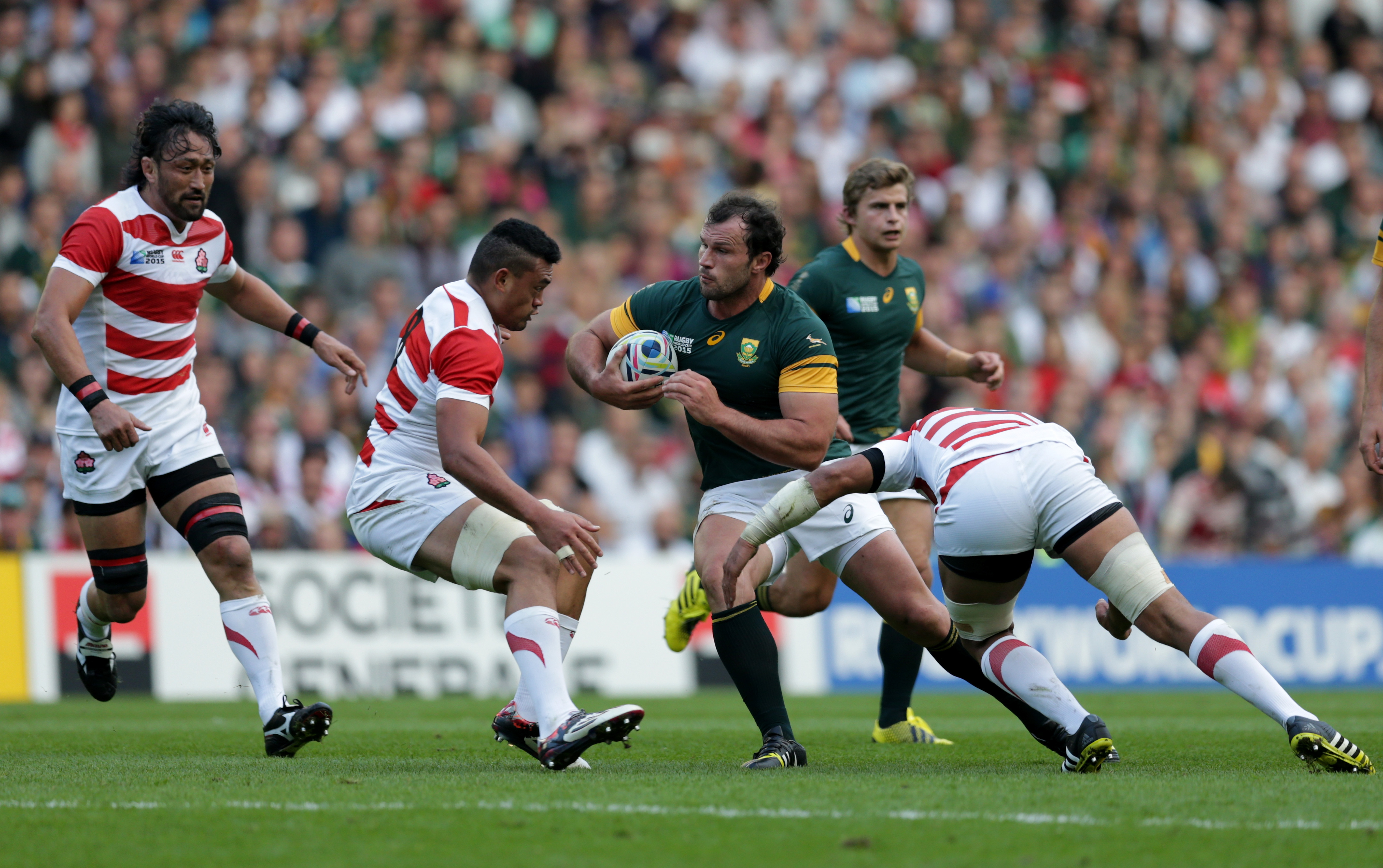 BRIGHTON, ENGLAND - SEPTEMBER 19: Bismarck Du Plessis of South Africa takes the ball on during the 2015 Rugby World Cup Pool B match between South Africa and Japan at Brighton Community Stadium on September 19, 2015 in Brighton, United Kingdom. (Photo by Steve Bardens - World Rugby/World Rugby via Getty Images)